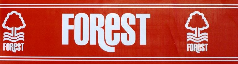 nottingham forest fc self adhesive wall border new - childrens